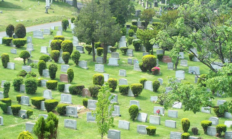Cypress-Hills-Cemetery-Photo-with-Headstones-on-Green-Grass
