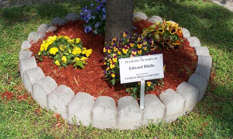 Memorial-Tree-Plantings