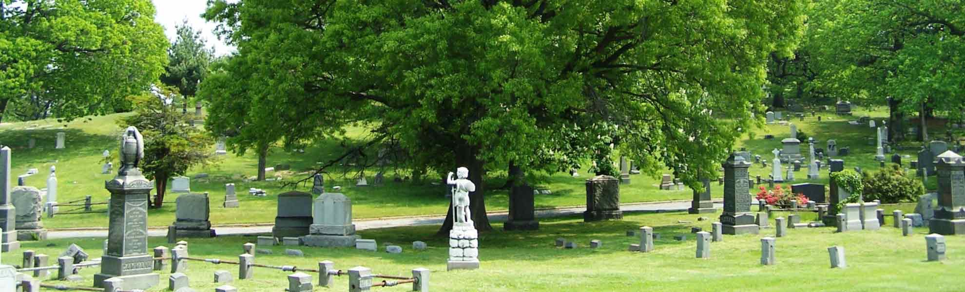 Image of cypress hills cemetery grounds